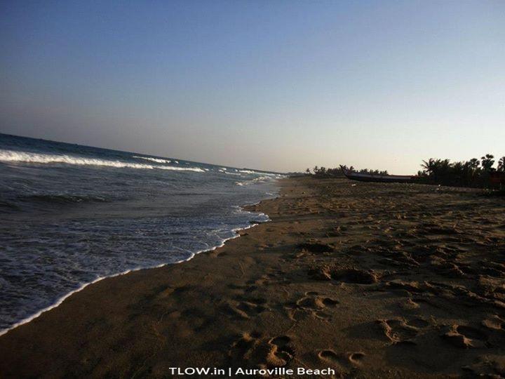 Surf The Waves In India Auroville Beach Pondicherry