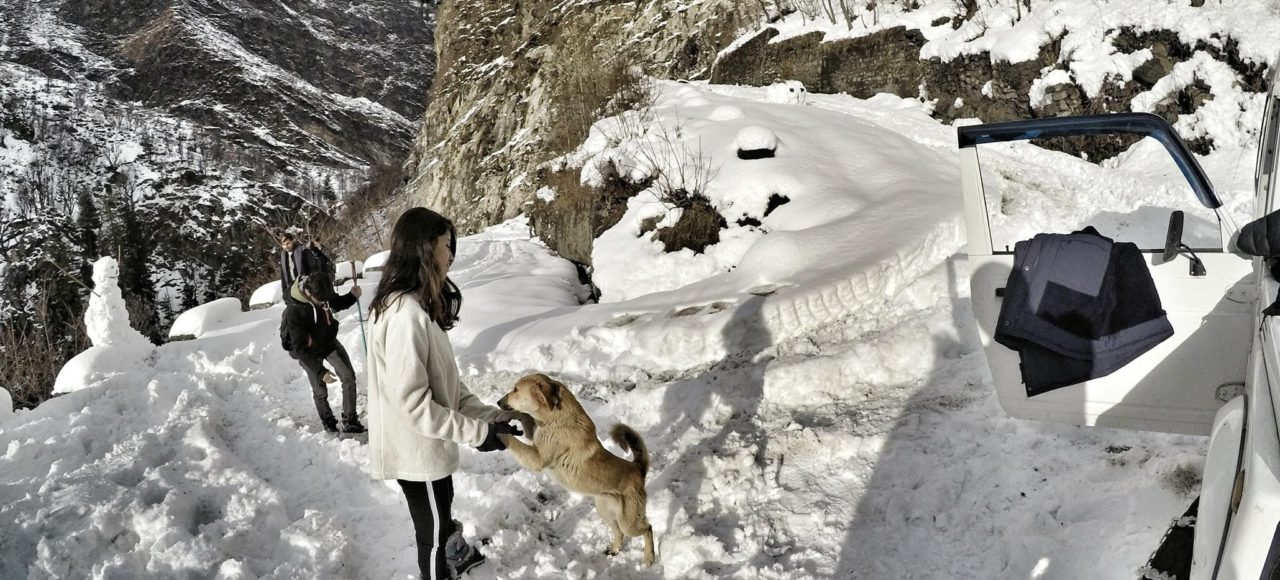 Winter vibe in Parvati Valley