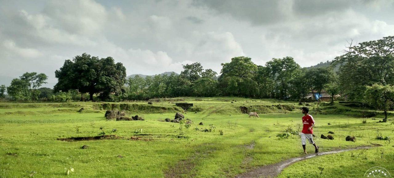Walking in the fields of sakwar
