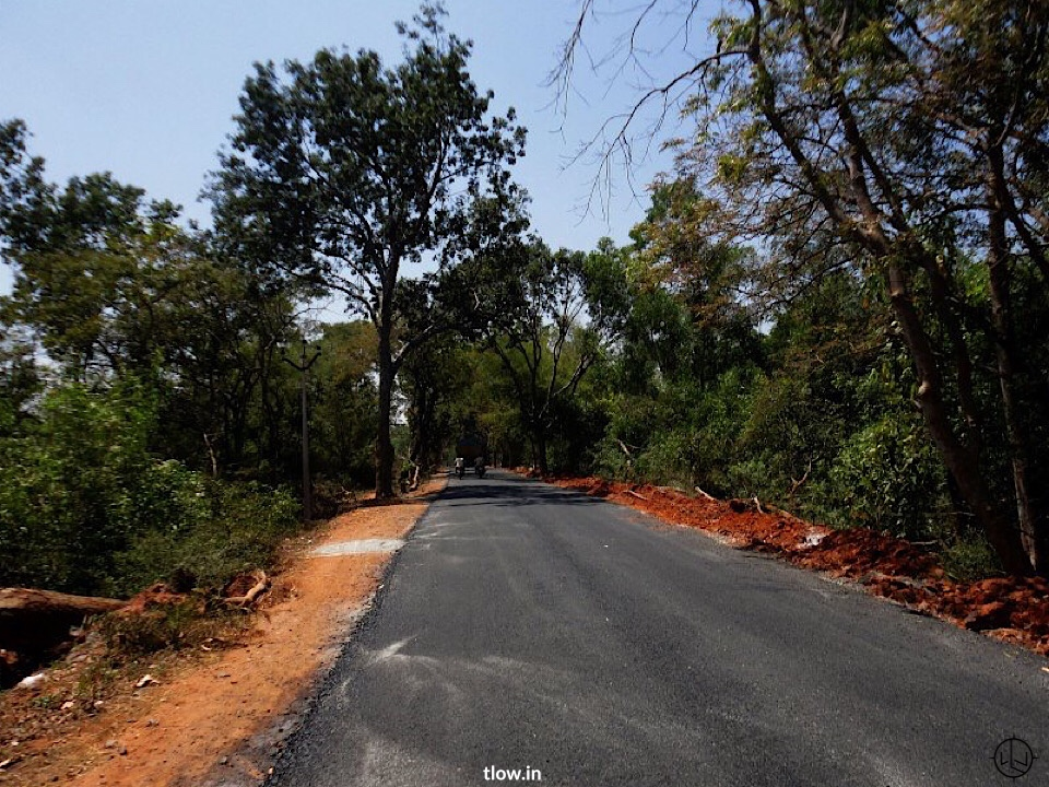 Road leading to Auroville
