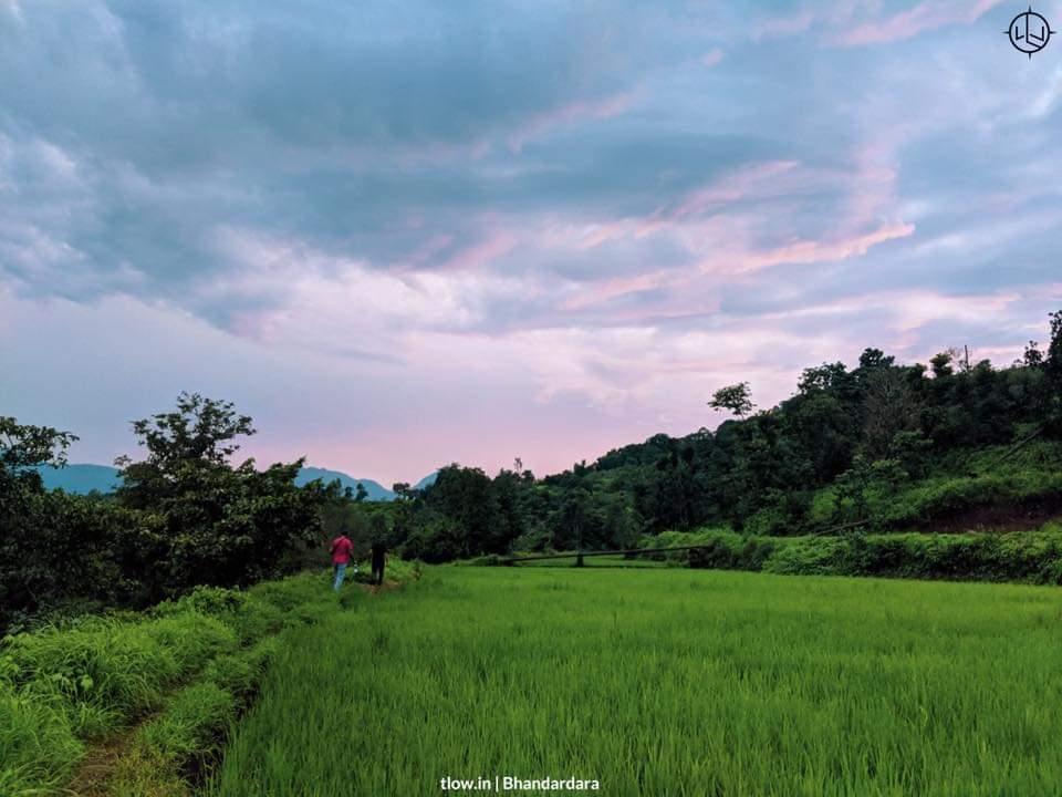 Evening walks in Bhandardara