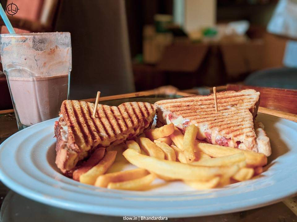 Grilled sandwich with fries