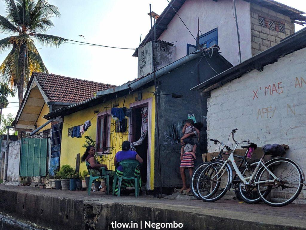 Negombo lagoon life Sri Lanka